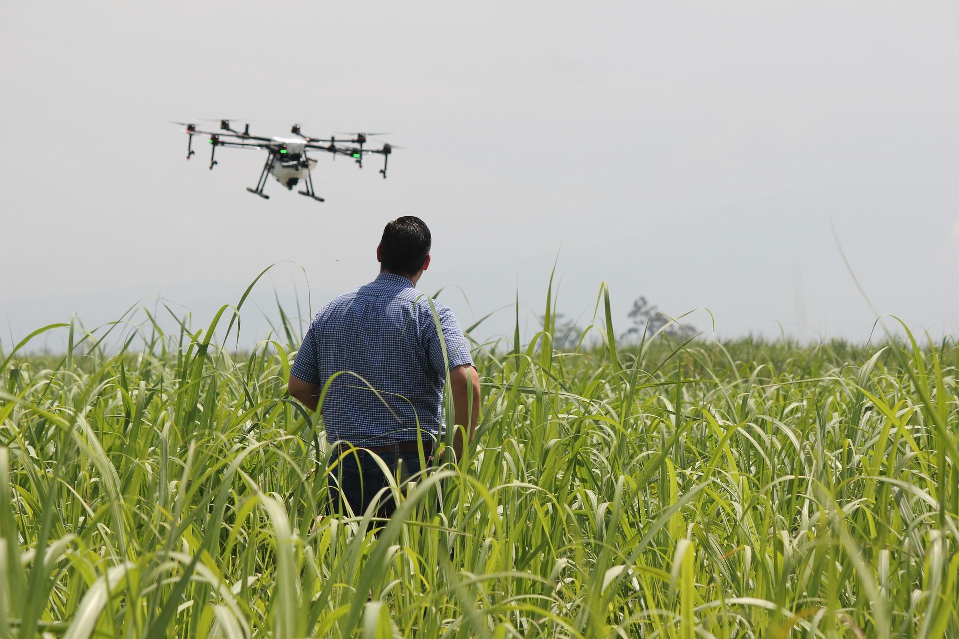 Ministerul chinez al agriculturii oferă încă un impuls OMG-urilor